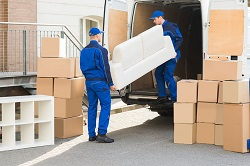 Backload removalists and Movers