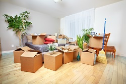 Brisbane to Bridgewater Removalists - Services